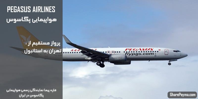 نمایندگی رسمی فروش بلیط هواپیمایی پگاسوس در ایران Pegasus Airlines