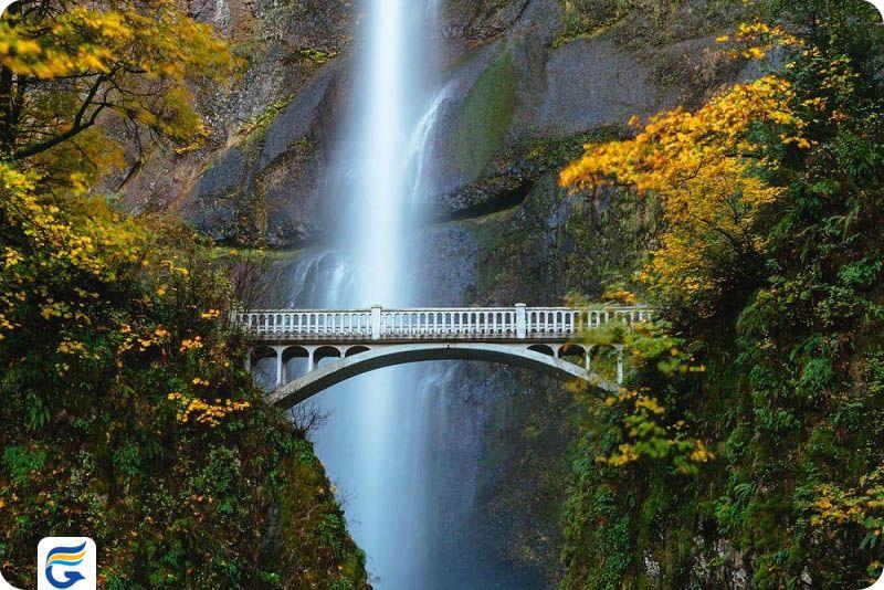 قیمت بلیط ونزوئلا - آبشار انجل ونزوئلا Angel Falls