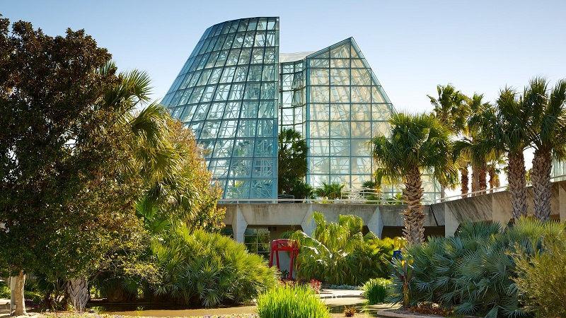 باغ گیاه شناسی سن آنتونیو و قیمت بلیط رفت و برگشت آمریکا