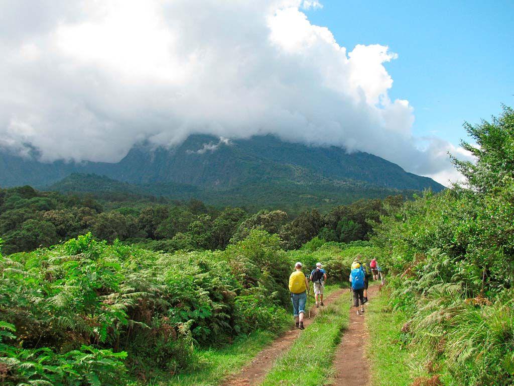 کوه مرو تانزانیا Mount Meru- بلیط دقیقه 90 تانزانیا