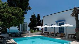 هتل دار سعید تونس