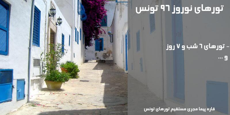 قیمت و فروش ارزانترین تور حمامت تونس نوروز 97