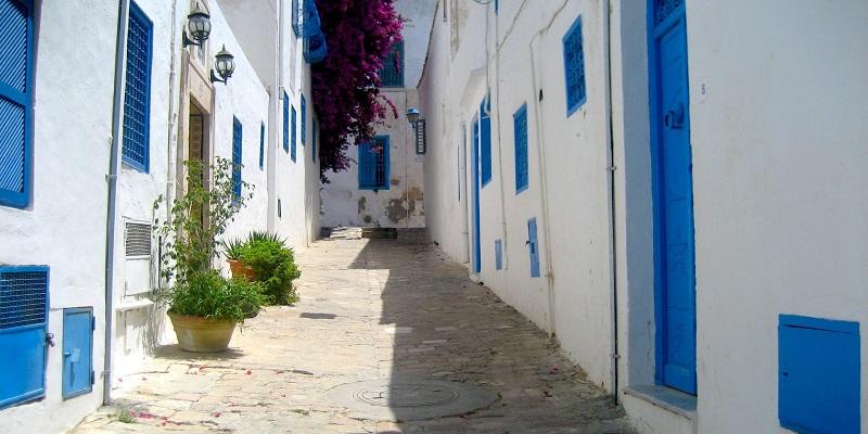 تورهای ارزان قیمت ترکیبی تونس ( حمامت – نابل )