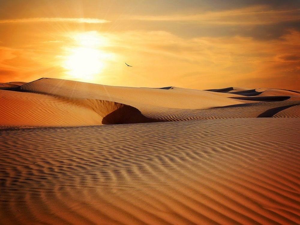 تور عمان از کیش